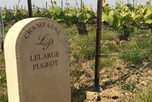 Champagne House Lelarge-Pugeot Launches Champagne