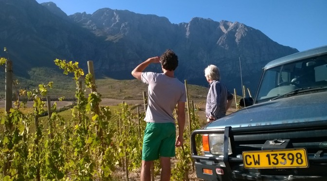 Out of Africa: The Hallgarten Buying Team Heads To South Africa In Search of New Wines – Day 3