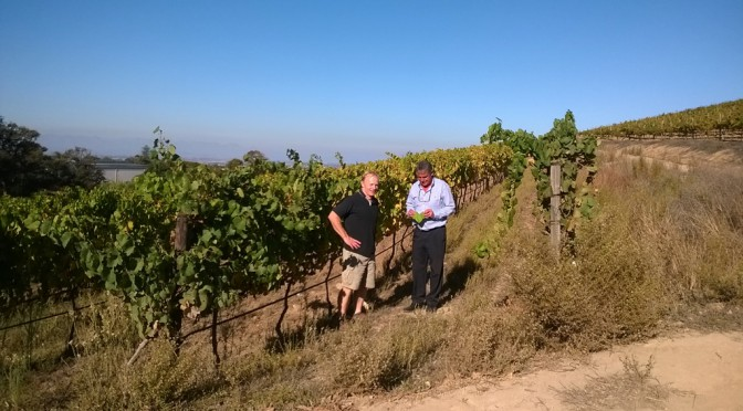 Out of Africa: The Hallgarten Buying Team Heads To South Africa In Search of New Wines – Day 4