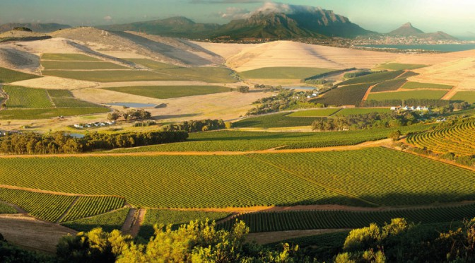 Out of Africa: The Hallgarten Buying Team Heads To South Africa In Search of New Wines – Day 2