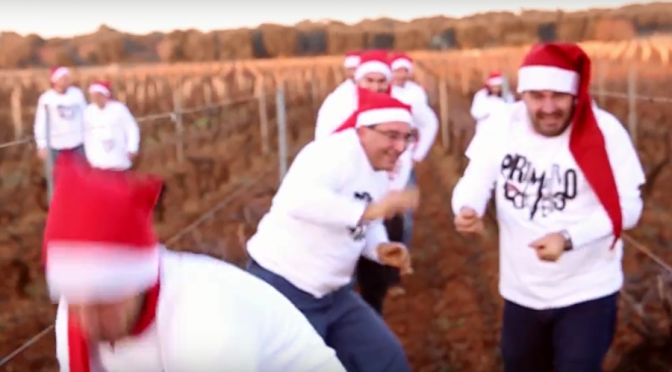 Video: A Christmas Greeting From San Marzano