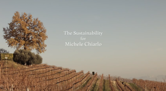 Video: Michele  Chiarlo on Sustainability