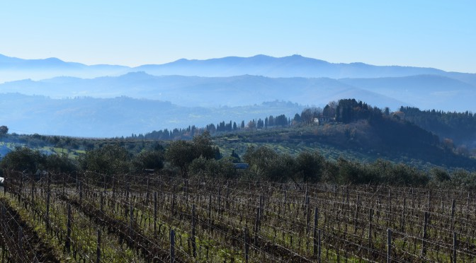 A Tuscan tour of frescobaldi and the Defender of Sangiovese