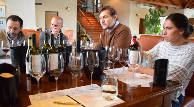 Argentina: One producer, two regions, one tasting