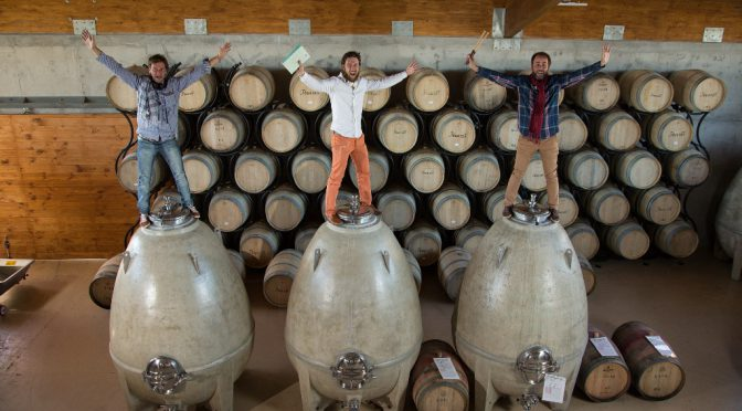 The Diversity of Wine, by Chris Losh